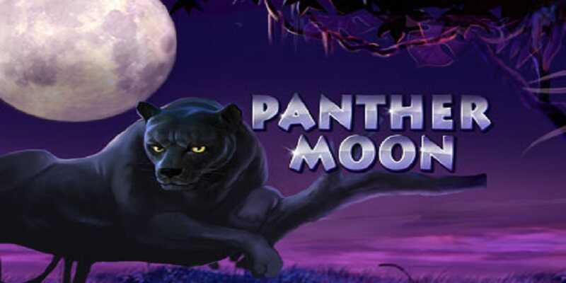 รีวิวสล็อต Panther Moon
